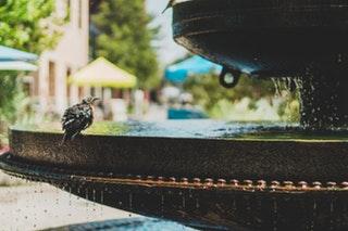 Egészséges Víz – Hasznos cikkek oldala a09d298475